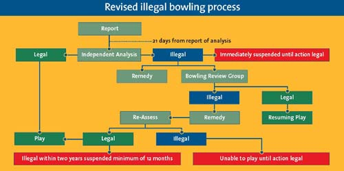 Bolwing Review flow-chart